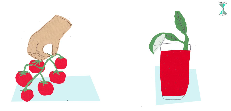 #278 per winkelbezoek mag je één product kopen -OF- je moet al je drinken atten