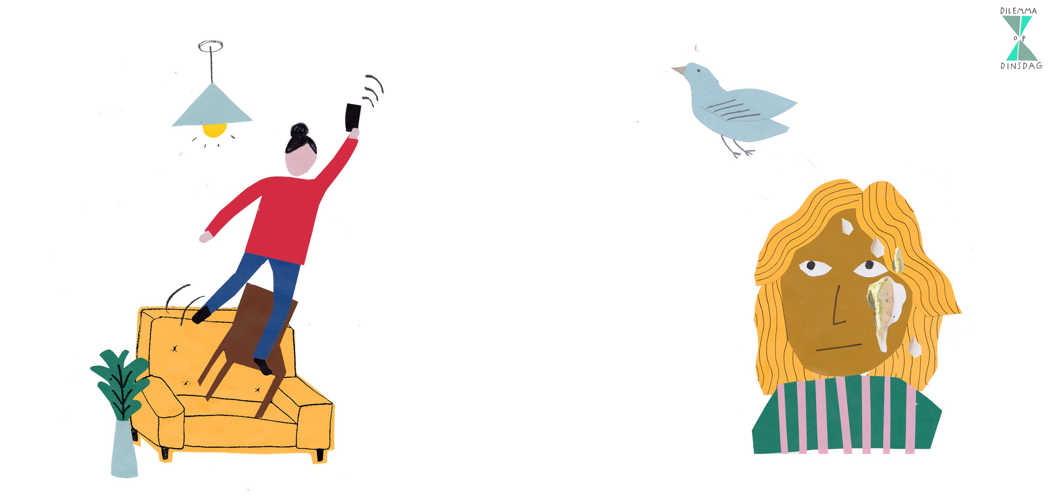 #360 altijd slechte wifi -OF- je wordt 1 keer per week onverwacht in je gezicht gepoept door een vogel