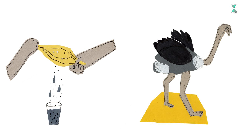#102 struisvogel voor web